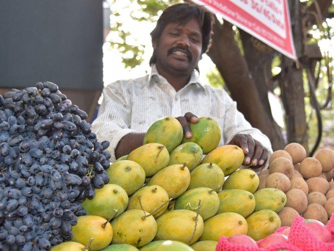 Mango season advanced, but exports may be hit