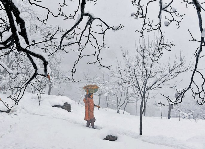 Fresh snowfall in Kashmir