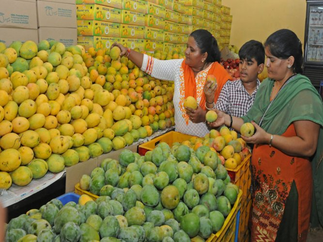 More hot water treatment units in state to process mangoes