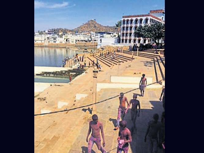 Foreigners in Pushkar rip off each other's shirts to mark Holi