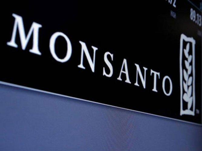 We always go through regulations: Monsanto