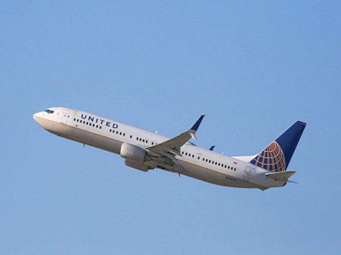 Scorpion stings passenger on United Airlines flight