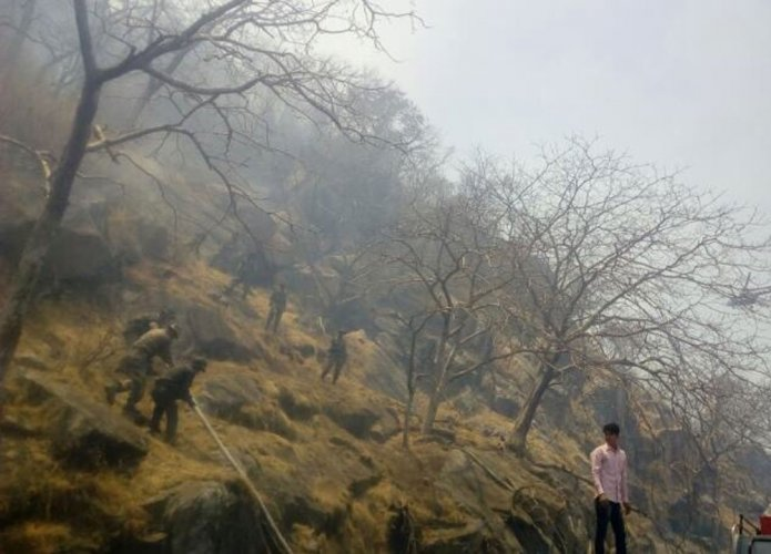 Mount Abu Fire: Army Joins hands with IAF to douse the fire