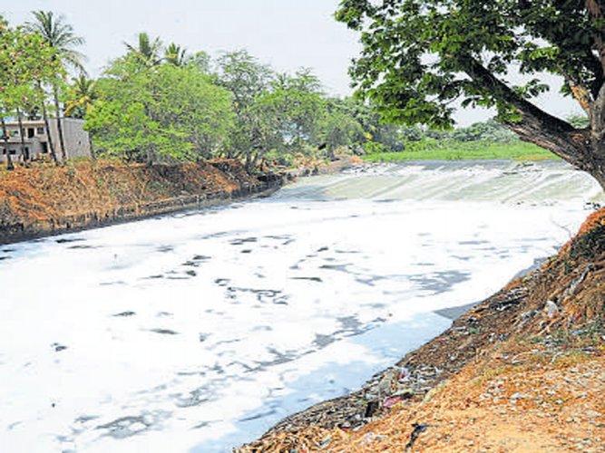 Deadline looms, govt begins lake cleaning