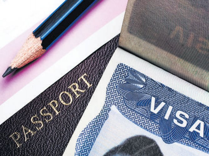 TCS, Infy accounted for 8.8% of total  H-1B visas: Nasscom