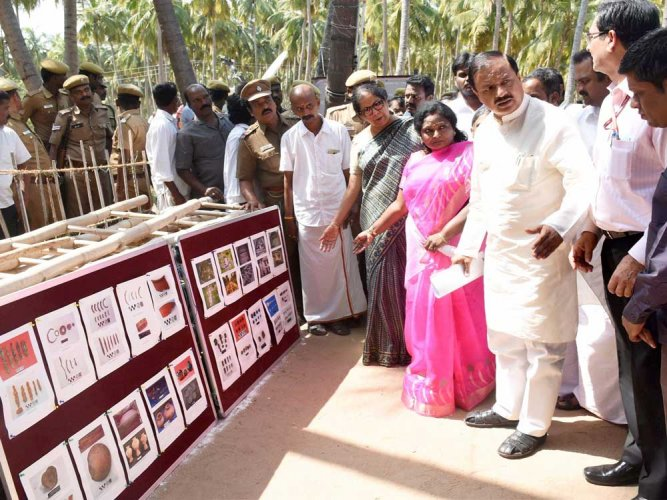 No plans to stop excavation at TN site, says minister