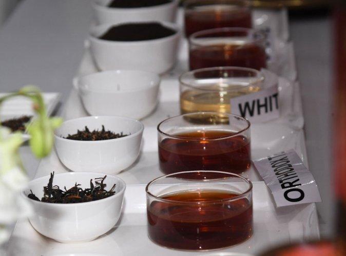 Tea tree genetic secrets unlocked