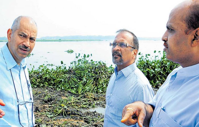 State to seek more time from NGT to clean Bellandur lake