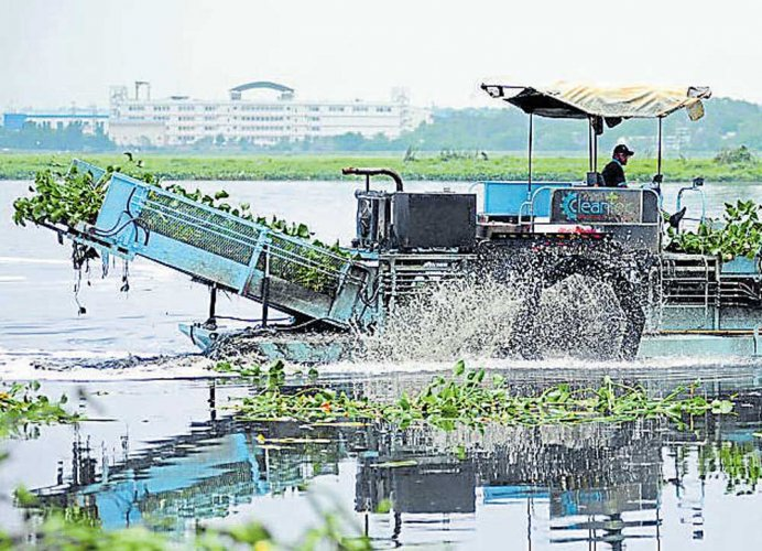New coalition of NGOs to save lakes