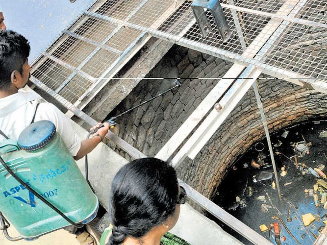 As monsoon approaches, Palike gears up to check diseases