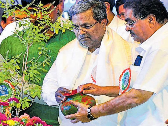 Why hasn't years of tree plantation increased forest cover, asks CM