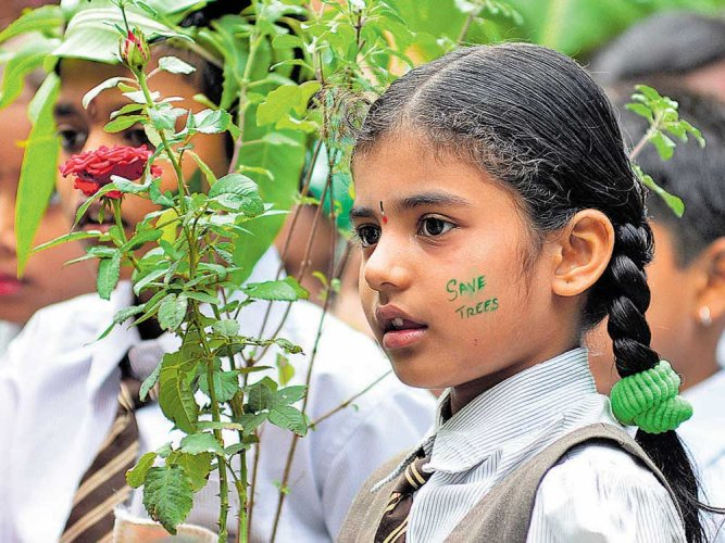 Tree planting, cleanliness drive mark green day