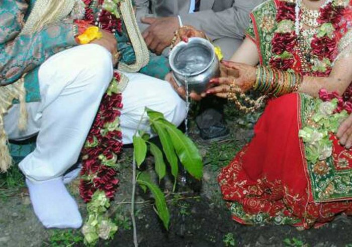 'Green Marriage' to create environmental awareness