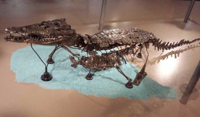 Over 66-million-year-old crocodile fossil found in China