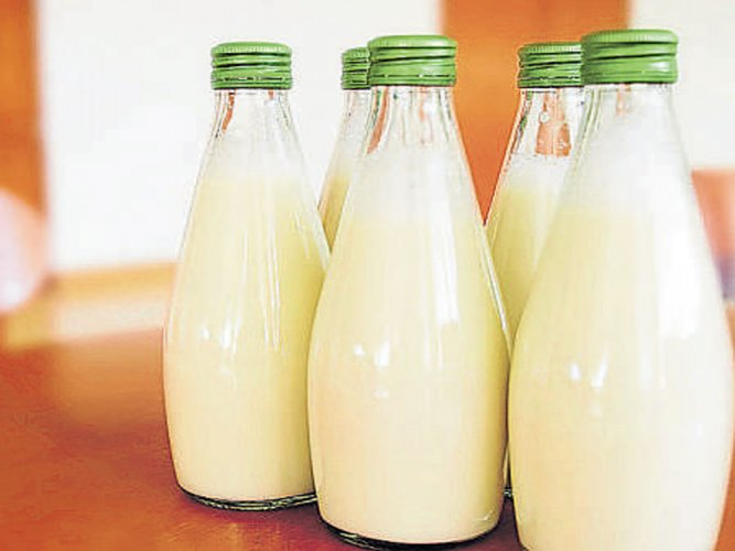 Low-fat milk may increase Parkinson's risk: study