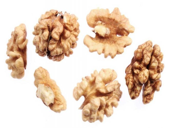 Eating walnuts may help control appetite: study
