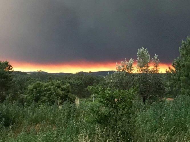 Huge Portugal forest fires kill 57, injure scores