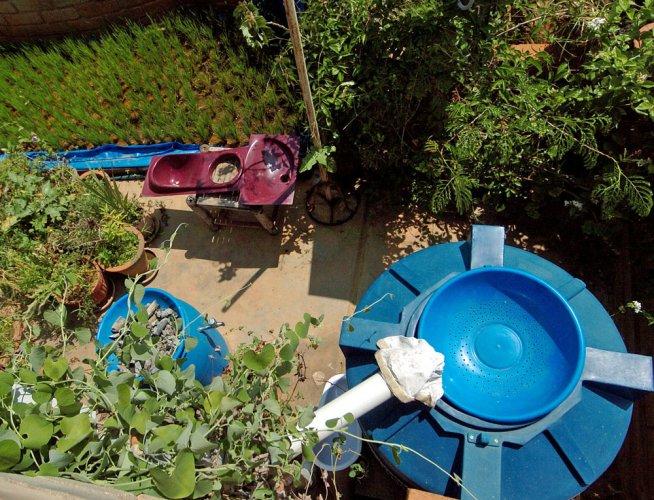 NGT seeks action plan from schools on rainwater harvesting
