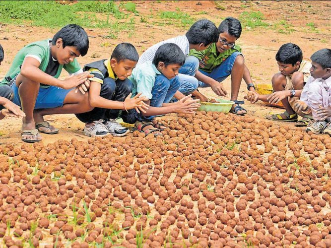 Forest dept to take up seed ball dispersal in big afforestation drive
