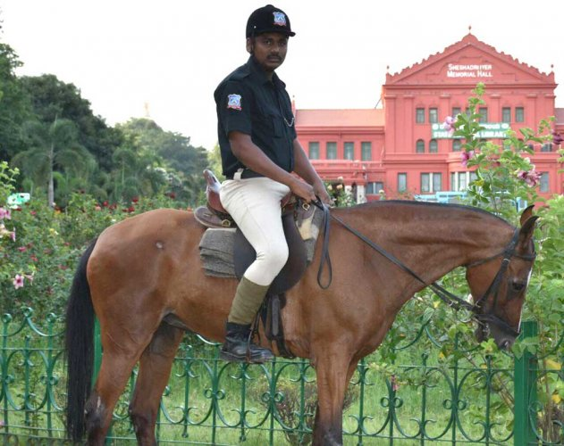 Mounted police get new, chic uniform
