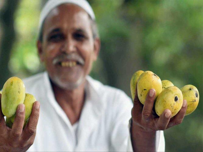 Little bite of India-Pak history: Zia, Indira and mangoes
