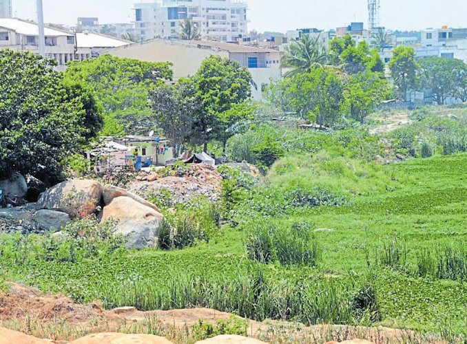 Govt plans to give up control over degraded water bodies