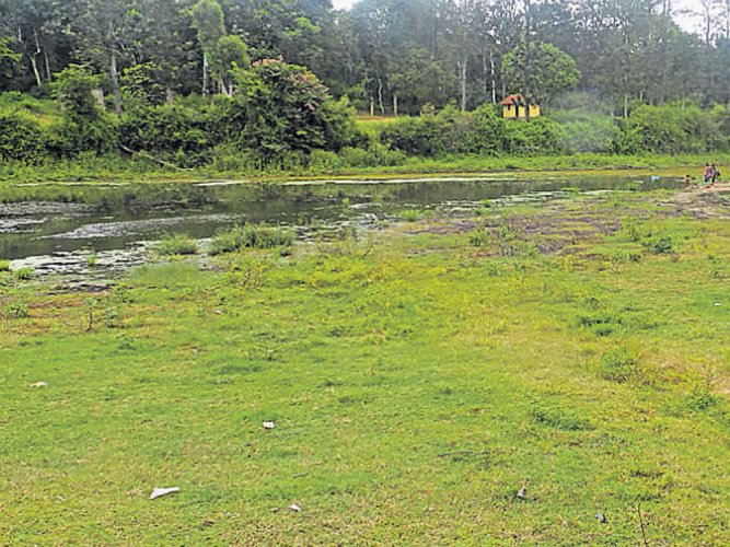 With deficient monsoon, water bodies near dry
