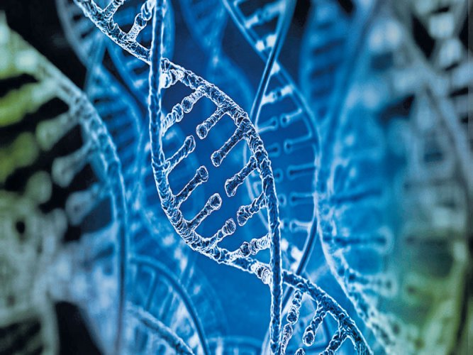 Law panel for strict confidentiality of DNA data