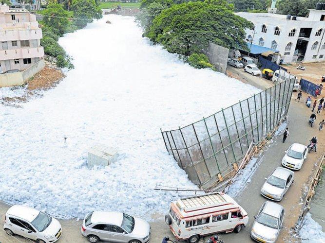 Bellandur lake froth: NGT summons top Karnataka officials