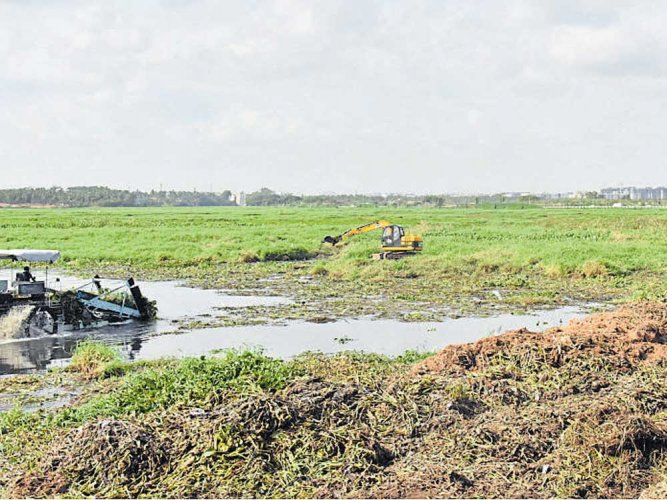 Bellandur expert panel asks each govt dept to report on progress