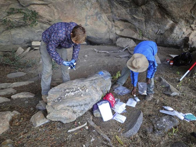 Ancient skeletons reveal clues to Africa's past