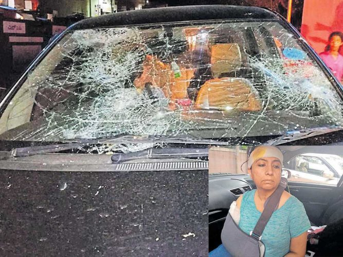 Bengaluru techie claims attack by mob for trying to rescue cows