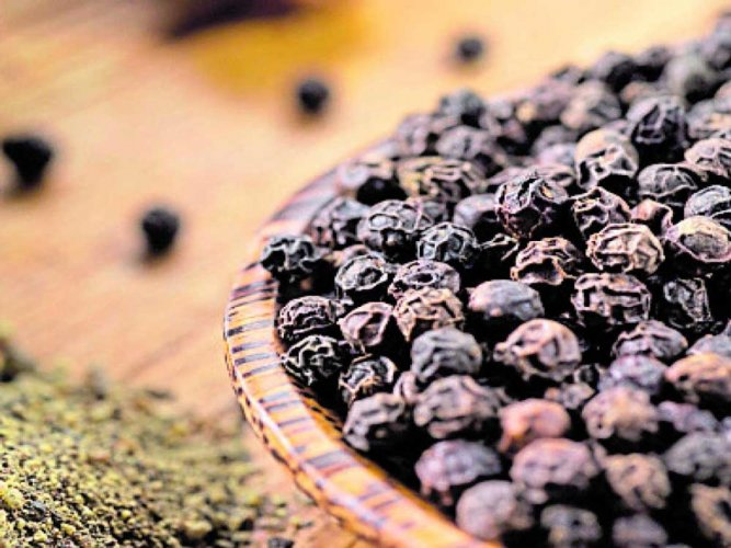 Pepper imports: CM seeks Centre's intervention