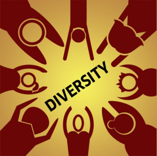 Diversity in social sector: working towards elusive ideal