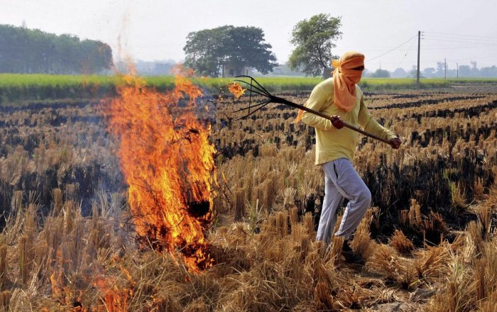 Air pollution: Punjab CM urges PM to intervene to tackle crop residue burning