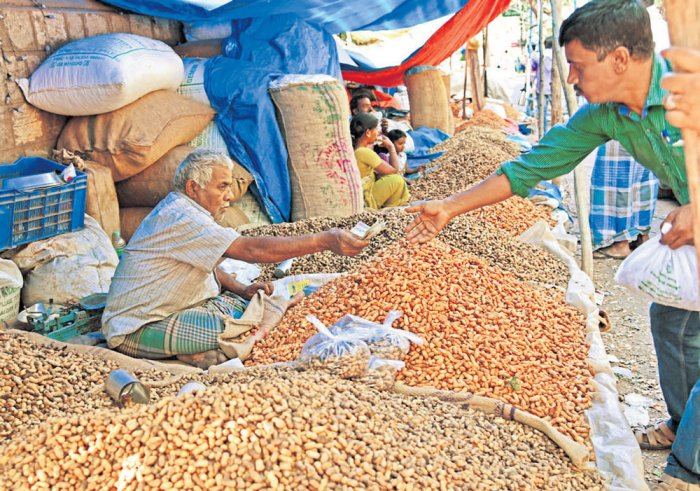 At groundnut festival, vendors say yes to mobile payment