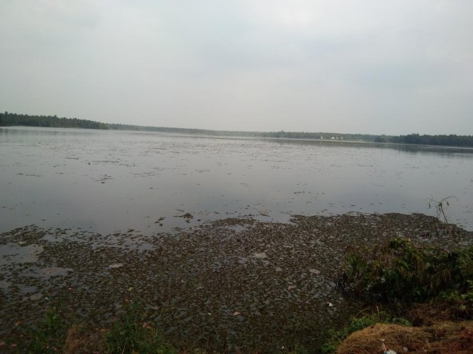 Dist administration plans big boost for water tourism at Janivara Lake