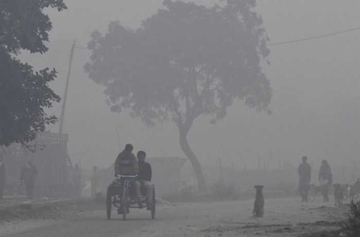 When toxic air chokes urban ecosystem