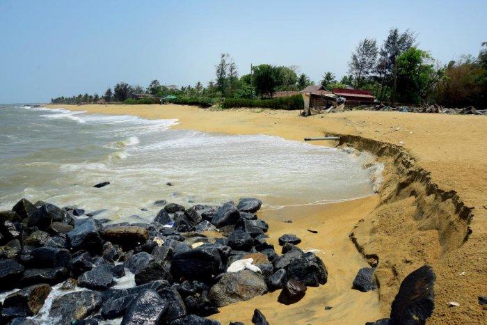 Saving our coastlines