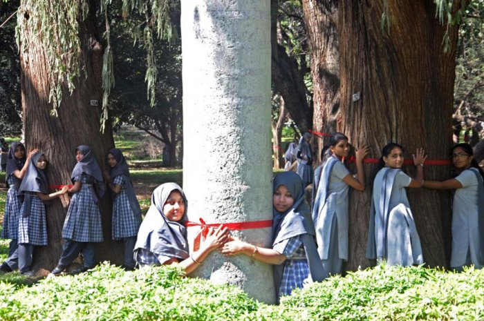 13,800 schoolkids pull of largest tree hug at Lalbagh