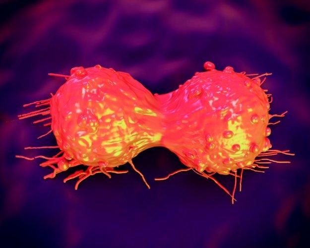 Scientists edit gene to treat cervical cancer