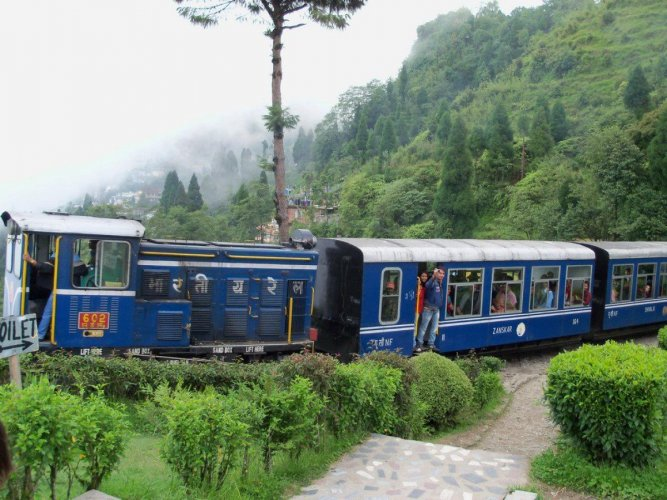 Darjeeling toy train resumes service