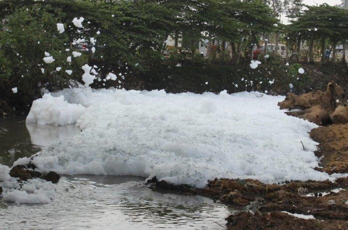 Varthur lake froths again