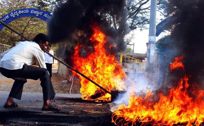 Mahadayi row brings four districts to a halt