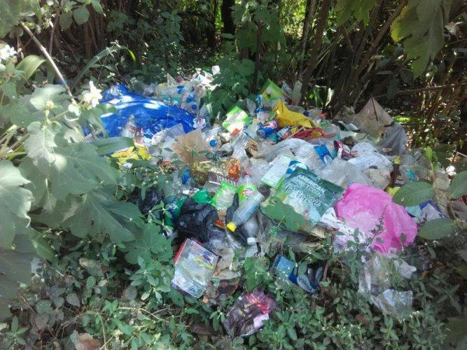 Lack of hygiene depriving Raja Seat of its glory