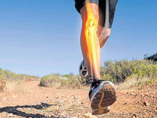 Calcium, vitamin D supplements may not lower fracture risk