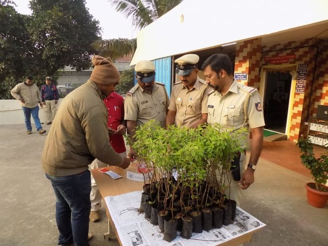 History-sheeters step into New Year with green gift from cops