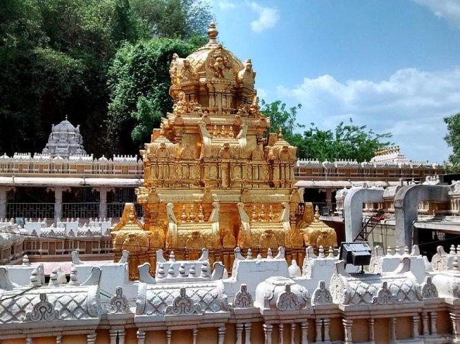 AP govt orders probe into unauthorised tantric rituals in temple