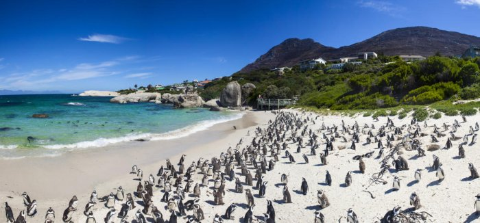 Natural wonders of South Africa