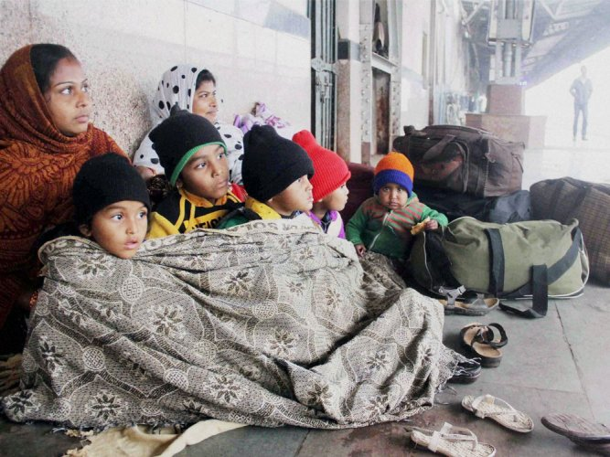 UP in grip of severe cold wave, toll mounts to 50